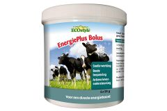 Ecostyle EnergiePlus Bolus 6-pack